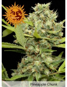 Barney´s farm - Pineapple Chunk
