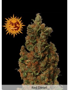Barney´s farm - Red Diesel