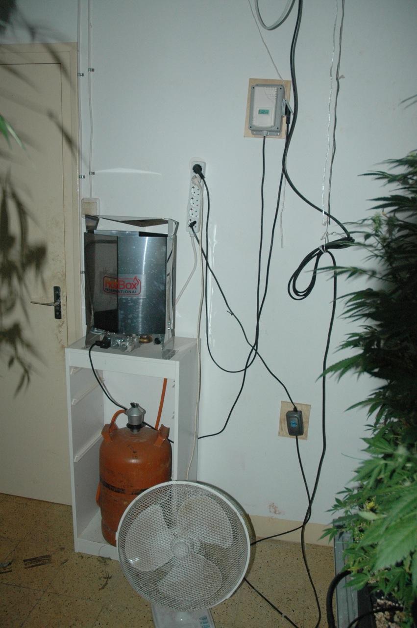 Cultivar marihuana en el interior manual de cultivo - Generador electrico a gas butano ...