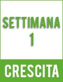Sweet Gelato Auto®