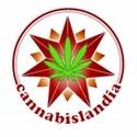 CANNABISLANDIA