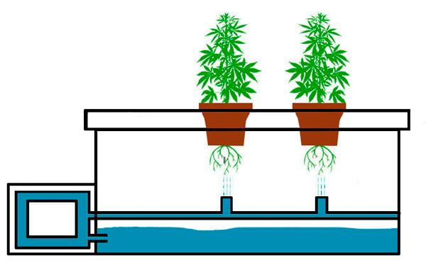 esquema cultivo aeroponico